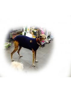 Camiseta protectora para perro