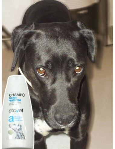 Champú para perros OTC vet para tratamiento de alergias