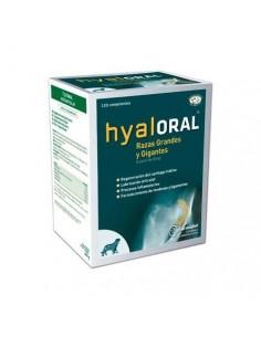 HYALORAL, Ácido Hialuronico para la artritis de los perros
