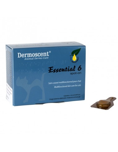 dermoscent essential gato