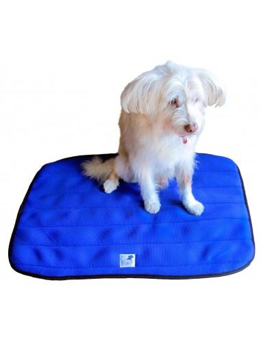 Cama terapéutica para perros Lucas y Lola